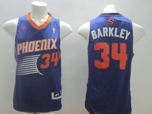 Top Quality Barkley Apparel Phoenix Suns purpel rev 30 material KQG3350